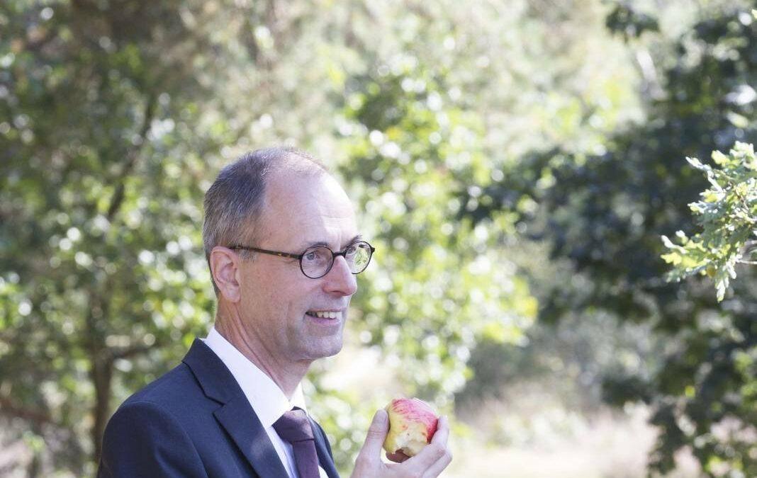 Interview Prof. Dr. W. Van Vlastuin Kunstmatige Intelligentie